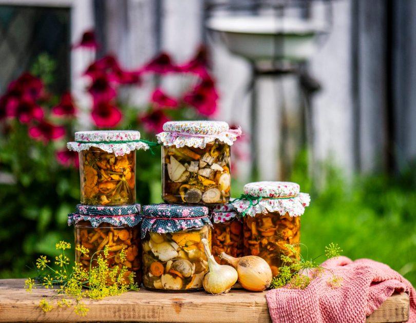 marineeritud kukeseened ja puravikud