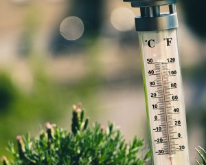 Pandēmija kā termometrs — kas mums visdārgākais (+ APTAUJA)