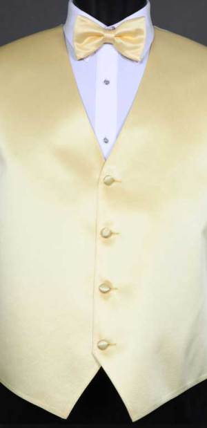 Sunbeam simply solid vest with matching bow tie