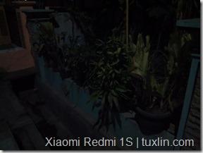 Kamera Xiaomi Redmi 1S vs Sony Xperia Ray Tuxlin Blog_06