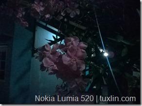 Kamera Zenfone 4 vs Lumia 520 Tuxlin Blog_10