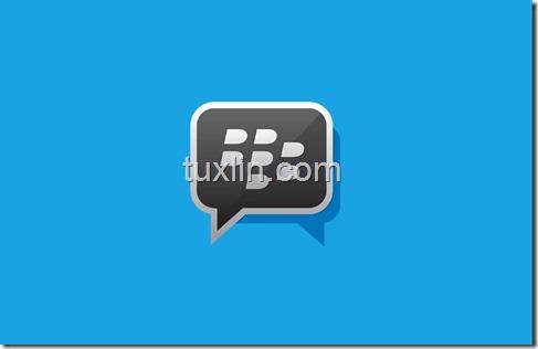 Custom PIN BBM Tuxlin Blog10