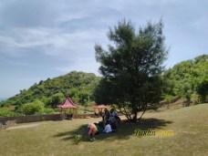 Hasil FotoKamera Asus Zenfone Max Pro M1 Siang Hari