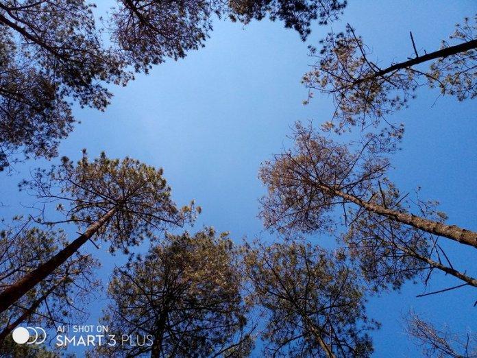 Review Kamera Infinix Smart 3 Plus: Begini Hasil Foto Triple Kamera Termurah 7