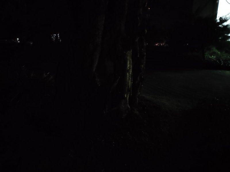 Hasil Foto Kamera Vivo Z1 Pro Malam Hari dengan LED Flash