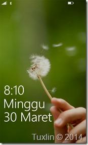 screenshot Lumia 520_07