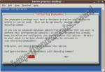 Configure dbconfig-common