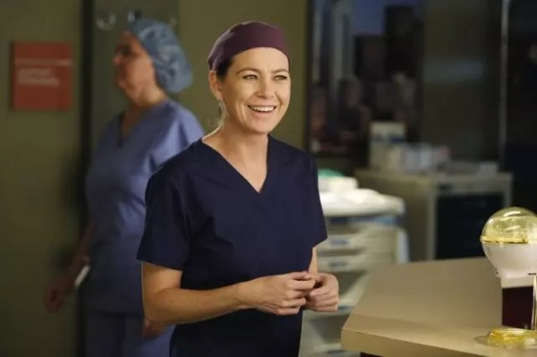 Grey's Anatomy Season 12: What to Expect from Whom - TV ...