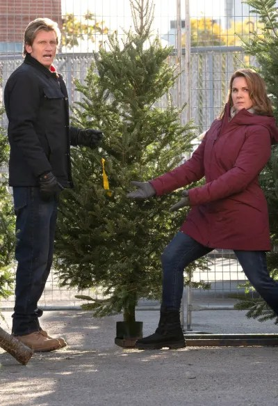 The Moodys Find Their Perfect Tree