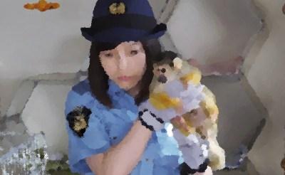 『警視庁いきもの係』第5話 あらすじ&ネタバレ リスサル! 鈴之助,渡辺瞳子ゲスト出演