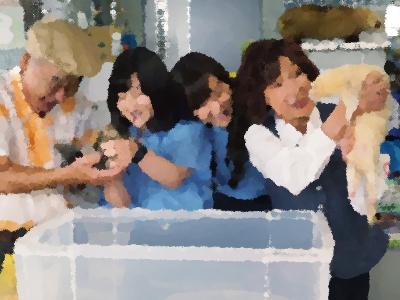 『警視庁いきもの係』第8話 フクロウ屋敷と隣人トラブル! あらすじ&ネタバレ 青山倫子ゲスト出演