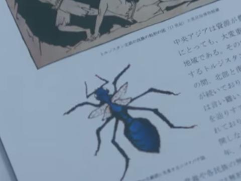 『ジゴクバチ』とは? 相棒16第8話に登場した外来生物! 猛毒のハチ!? ヒアリより危険なのか?