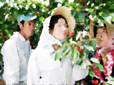 『農家の嫁は弁護士! 神谷純子のふるさと事件簿!!(シリーズ1)』 あらすじ&ネタバレ浅野ゆう子 主演、黒坂真美,森川由加里ゲスト出演