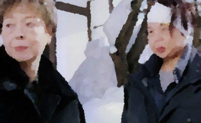 『犯罪交渉人ゆり子2 /雪の上州・水上温泉立てこもり事件』(テレ東 2002年4月)あらすじ&ネタバレ 市原悦子主演 加藤治子,平田満ゲスト出演