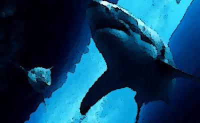 『海底47m』(映画 2017年) あらすじ&ネタバレ クレア・ホルト,マンディ・ムーア主演