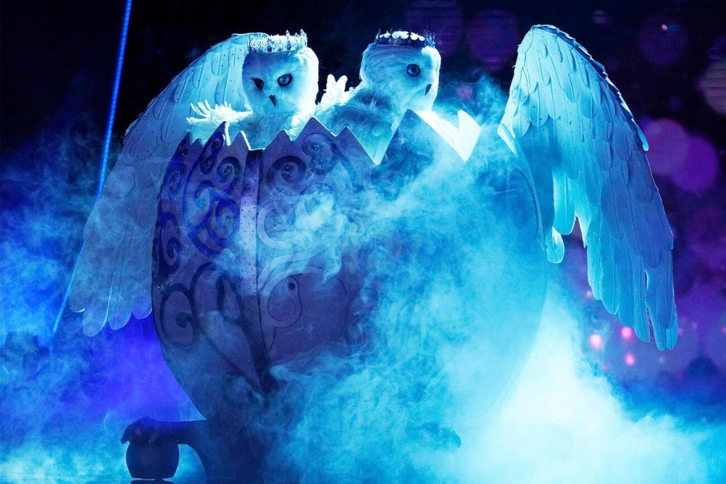 The Masked Singer's Snow Owls Are Probably This Famous Family Duo