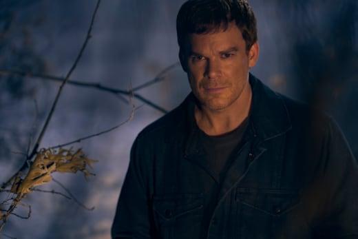 Dexter Looks Shifty