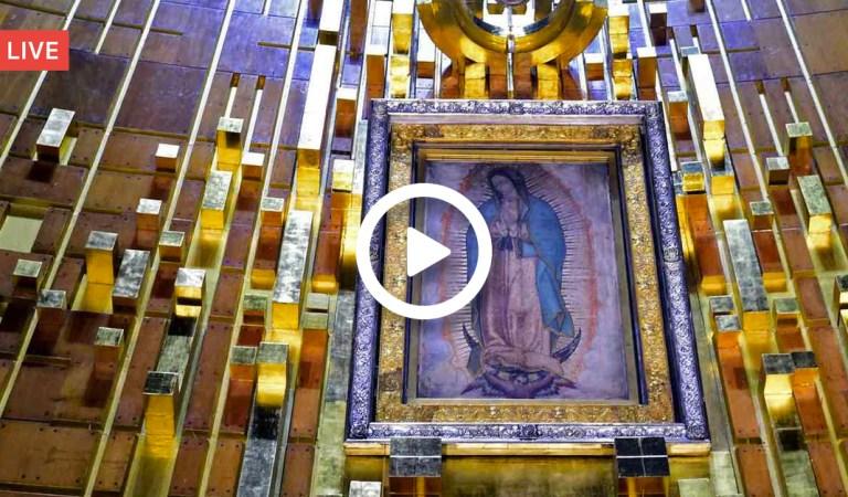 ¡Felicita a nuestra madre Maria! Transmisión en vivo desde la Basílica