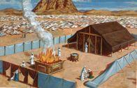 templul-1-800×600