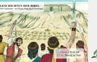 13.16 David in Not x