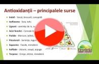 7. Alimentație pentru creier Part2 | Dr. Moroșan Sorin | fullHD