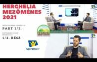 HERGHELIA – MEZŐMÉNES: Introducerea Centrului, Intézmény Bemutatás [Part 1][2021]