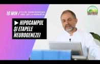 🧠 Hipocampul și Etapele Neurogenezei | Dr. Moroșan Sorin [2021] part.19.