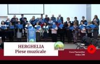 🎶🔊 MUZICĂ | Amintiri de la HERGHELIA – Seara Festivă | Ediția 296