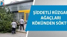 Adana'da hava sıcaklığı 26 dereceye düştü