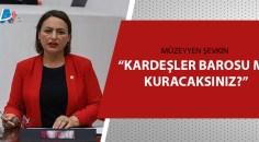 Adana Milletvekili Dr. Müzeyyen Şevkin açıkladı