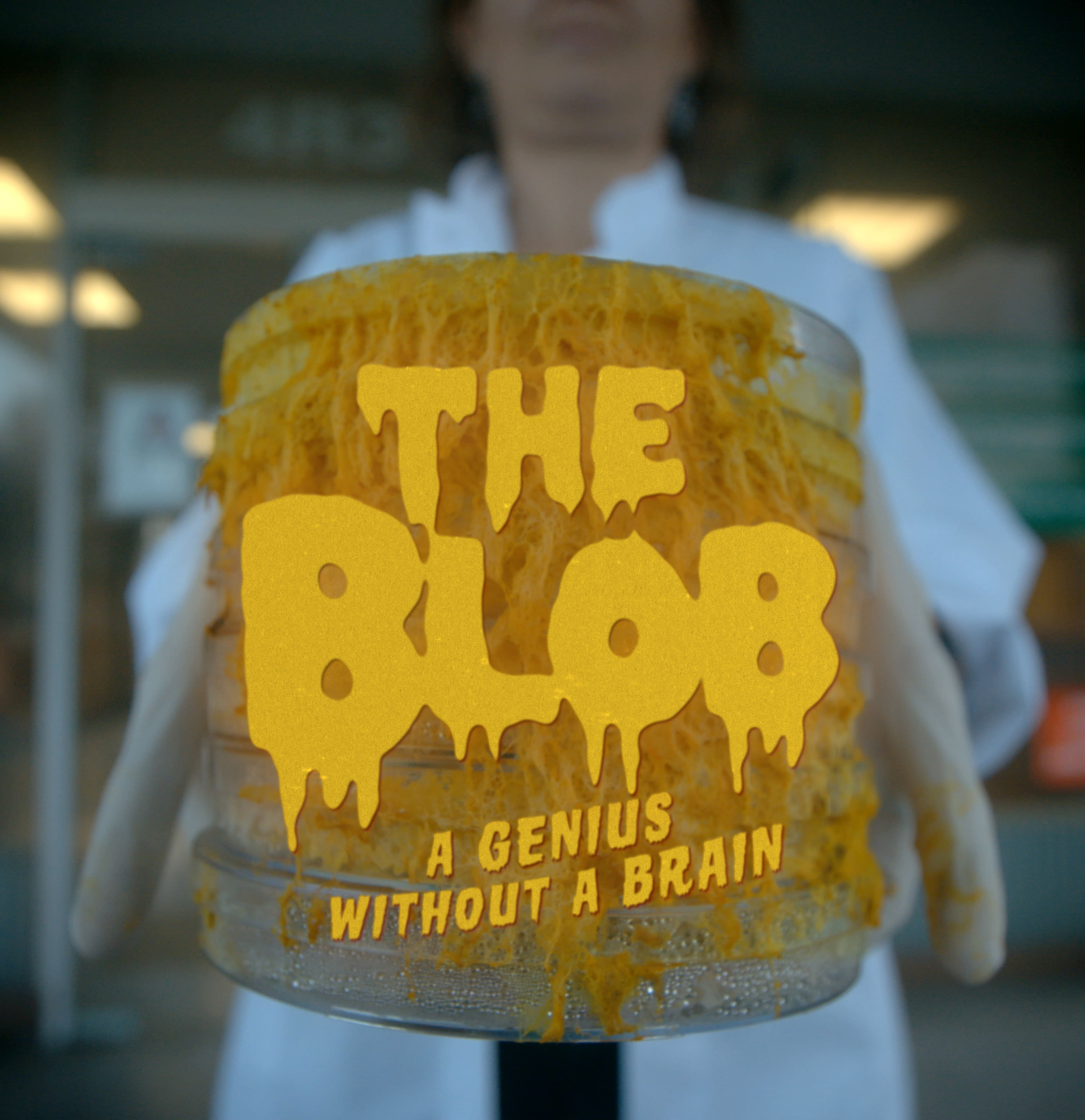 ARTE Distribution sells 'The Blob' to the U.S., Nova 'Secret Mind Of Slime' to premiere in Fall 2020 on PBS