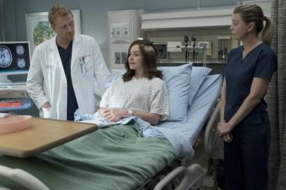 Greys Anatomy 14x04-5