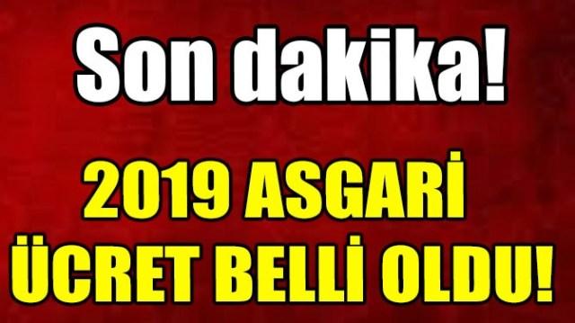 2019 ASGARİ ÜCRET BELLİ OLDU!