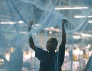 Insecticide-Net-tvcnews