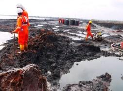 Ogoniland-Clean-up-tvcnews