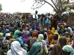 IDPs-TVCNews