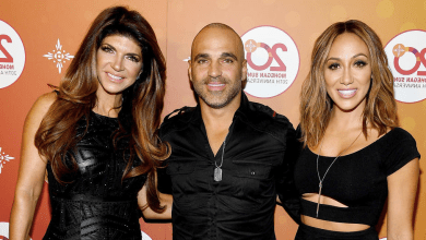 Teresa Giudice, Joe Gorga, Melissa Gorga, The Real Housewives of New Jersey, RHONJ season 11