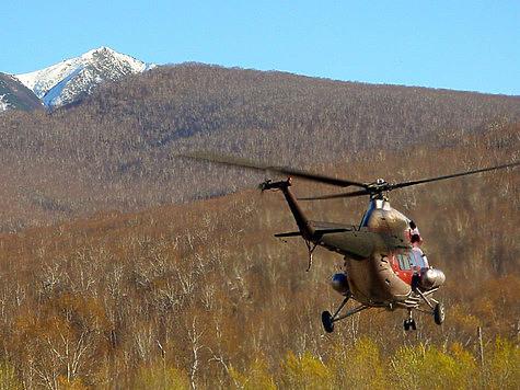 Минприроды разрешило отстреливать с вертолетов и ...