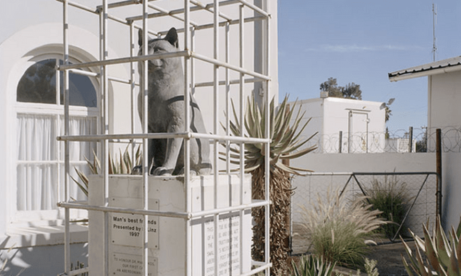 Cat statue by David Goldblatt