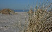 duinen-kijkduin