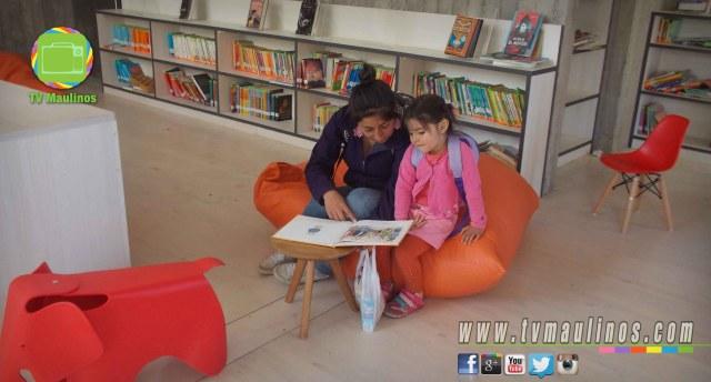 biblioteca constitucion 2