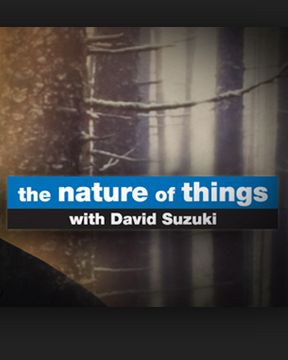 The Nature of Things with David Suzuki
