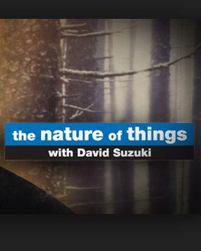 The Nature of Things with David Suzuki