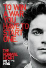 the new normal - matt bomer
