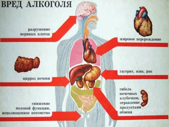 Влияние-алкоголя-на-здоровье-человека-3