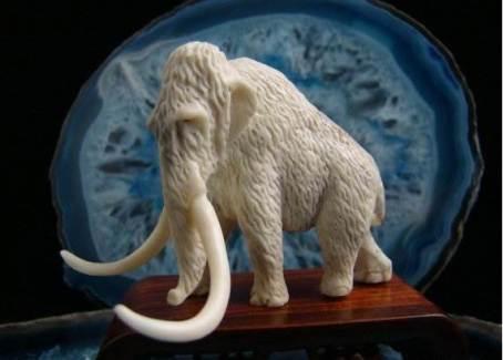 Слоновая-кость-6