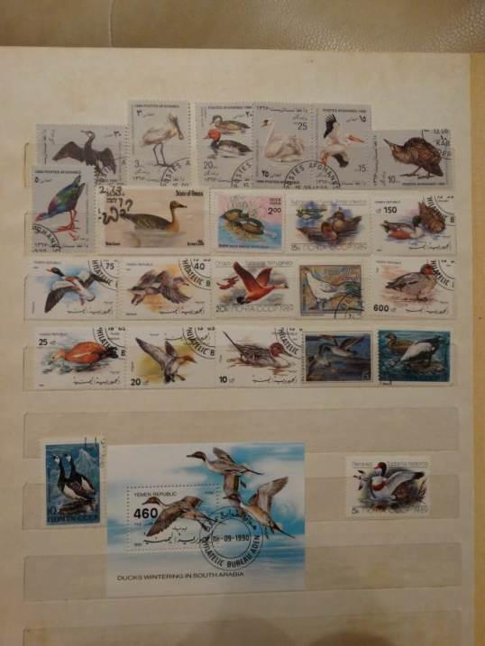 Марки-Коллекционирование-марок-страсть-моего-детства-8