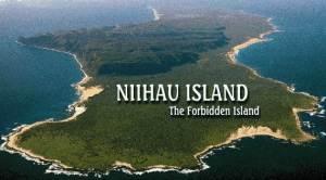 Морские-дары-Ниихау-и-особенности-изготовления-гавайских-украшений-2