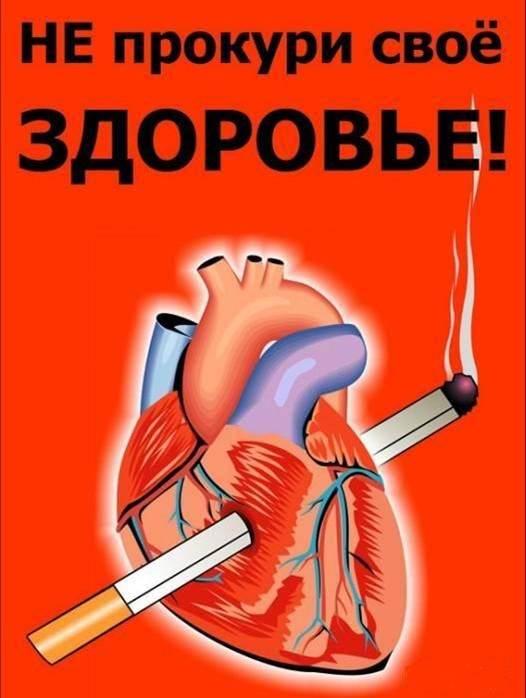 Профилактика-вредных-привычек-основа-здорового-образа-жизни-2