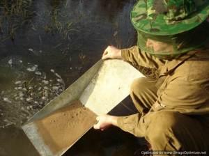 Образование-и-добыча-золота-в-реках-3